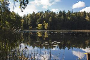 Övre dammen